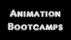 Animation Bootcamps 2017